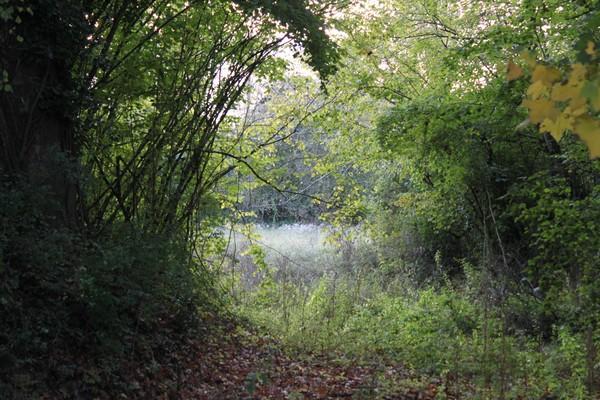 photos-divers-paysages/photos-d-automne-002.jpg